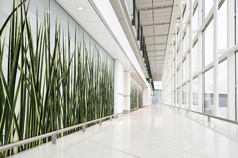 Partition wall in ViviSpectra Zoom glass with Silver Dragon Grass interlayer